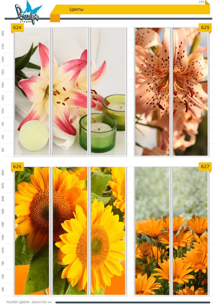 Изображение фотопечати для шкафов-купе, стр.100, цветы