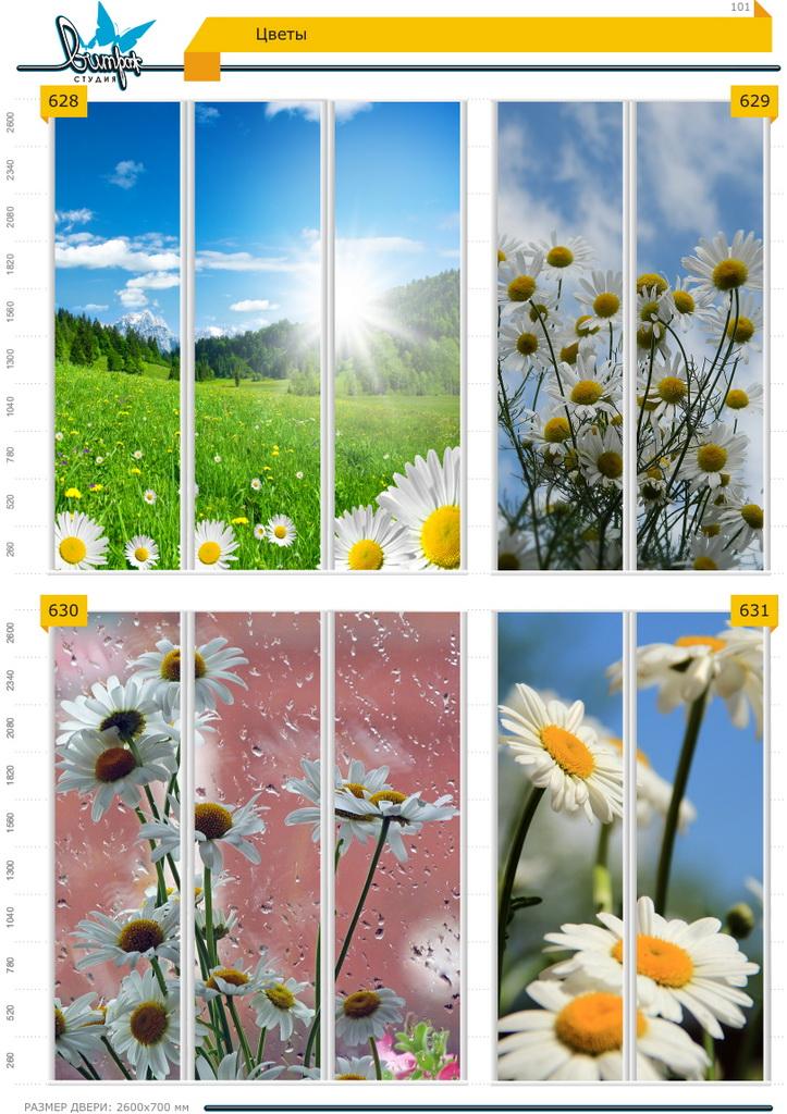 Изображение фотопечати для шкафов-купе, стр.101, цветы