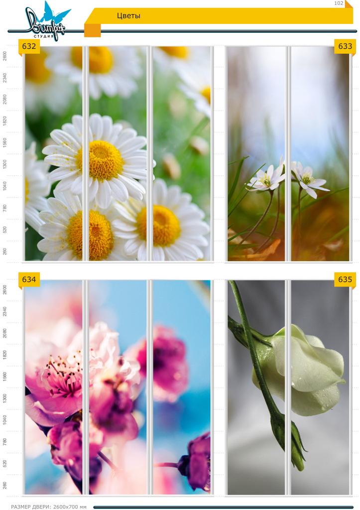 Изображение фотопечати для шкафов-купе, стр.102, цветы