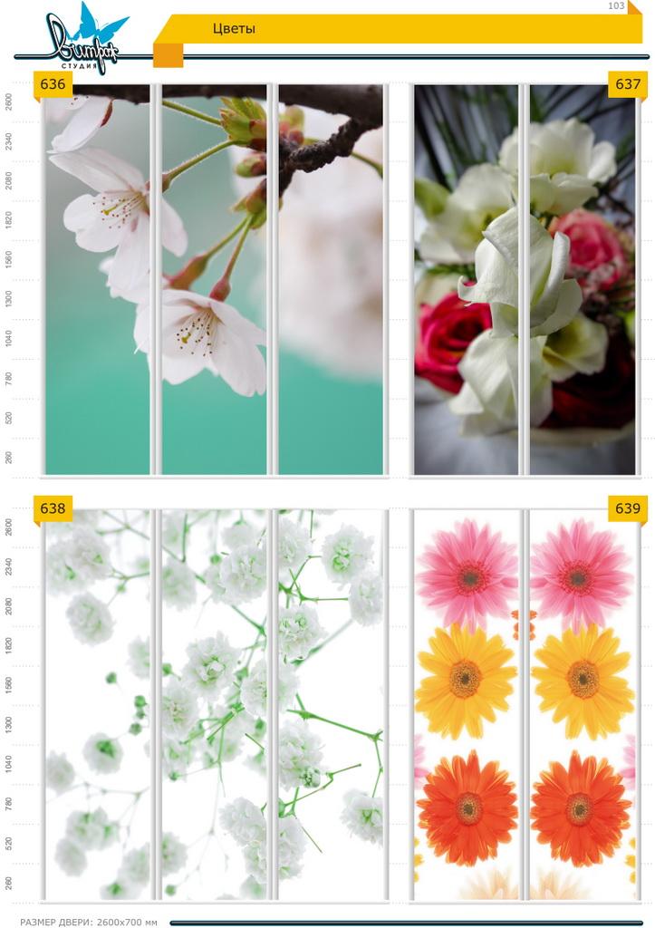Изображение фотопечати для шкафов-купе, стр.103, цветы