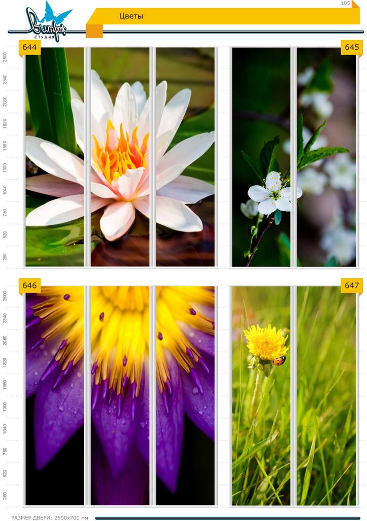 Изображение фотопечати для шкафов-купе, стр.105, цветы