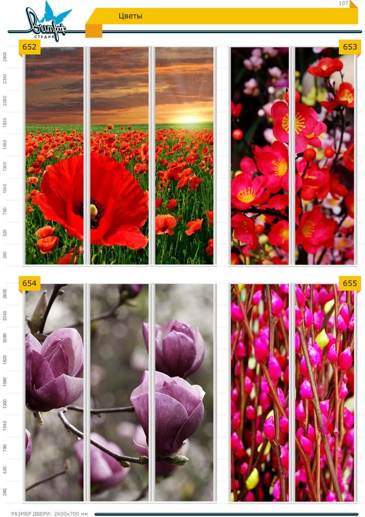 Изображение фотопечати для шкафов-купе, стр.107, цветы
