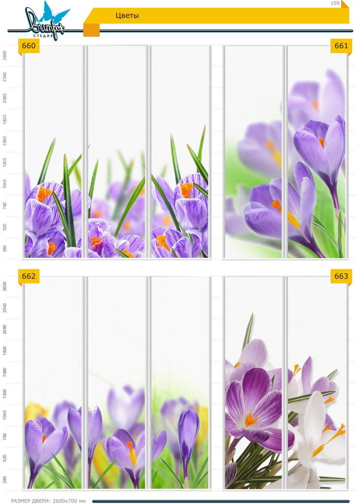 Изображение фотопечати для шкафов-купе, стр.109, цветы