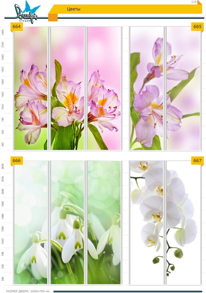Изображение фотопечати для шкафов-купе, стр.110, цветы