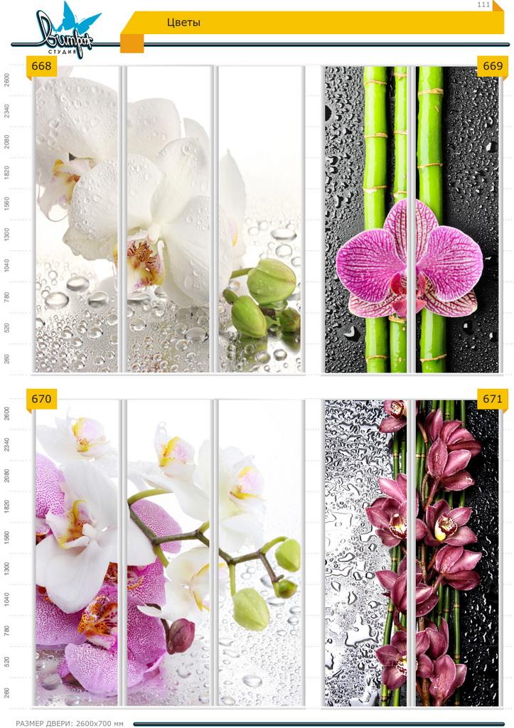 Изображение фотопечати для шкафов-купе, стр.111, цветы