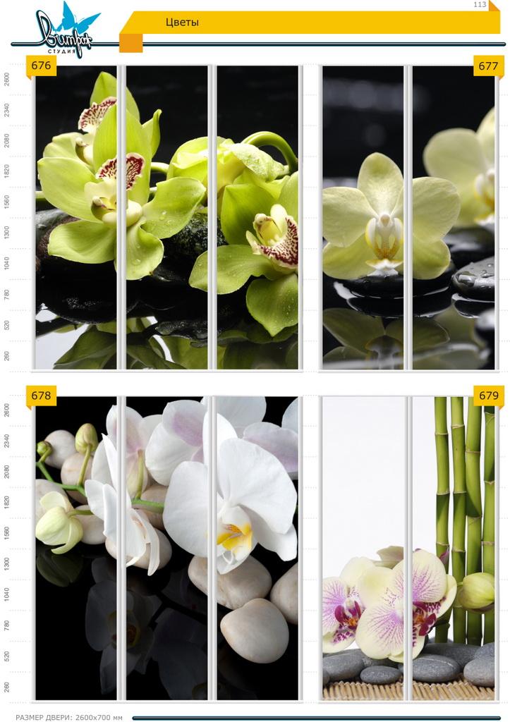 Изображение фотопечати для шкафов-купе, стр.113, цветы