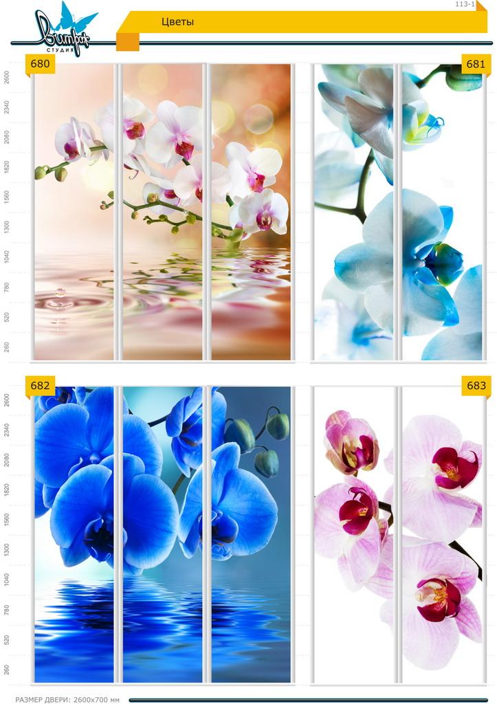 Изображение фотопечати для шкафов-купе, стр.113-1 , цветы