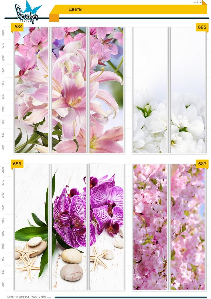 Изображение фотопечати для шкафов-купе, стр.113-2 , цветы