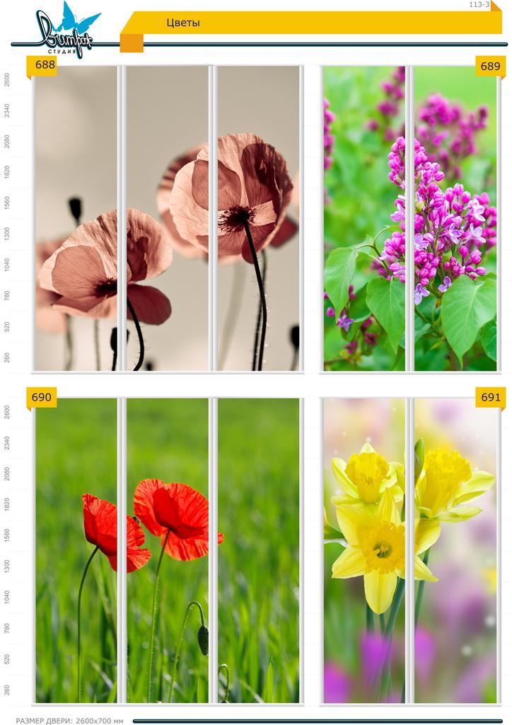 Изображение фотопечати для шкафов-купе, стр.113-3 , цветы