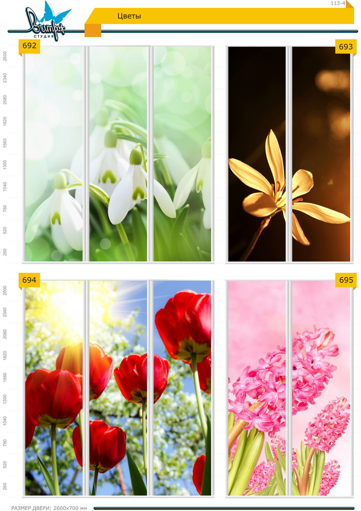 Изображение фотопечати для шкафов-купе, стр.113-4, цветы