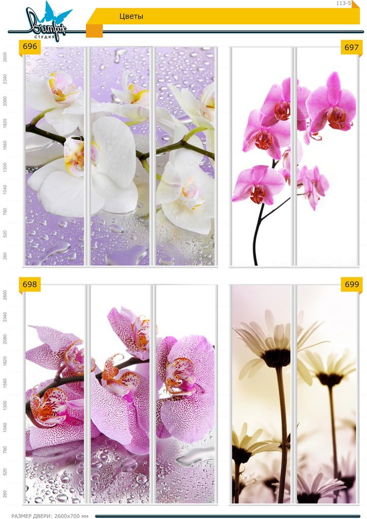 Изображение фотопечати для шкафов-купе, стр.113-5 , цветы