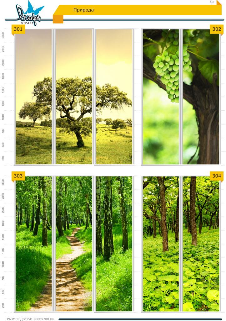 Изображение фотопечати для шкафов-купе, стр.40, природа