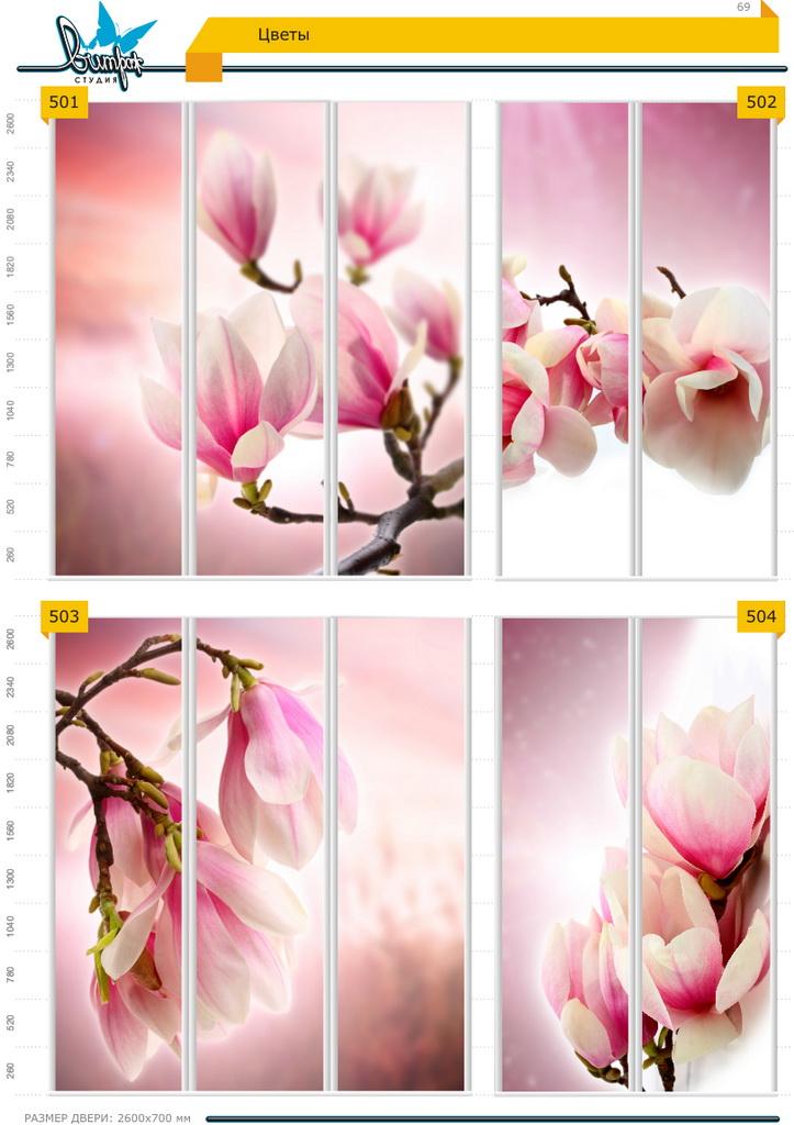 Изображение фотопечати для шкафов-купе, стр.69, цветы
