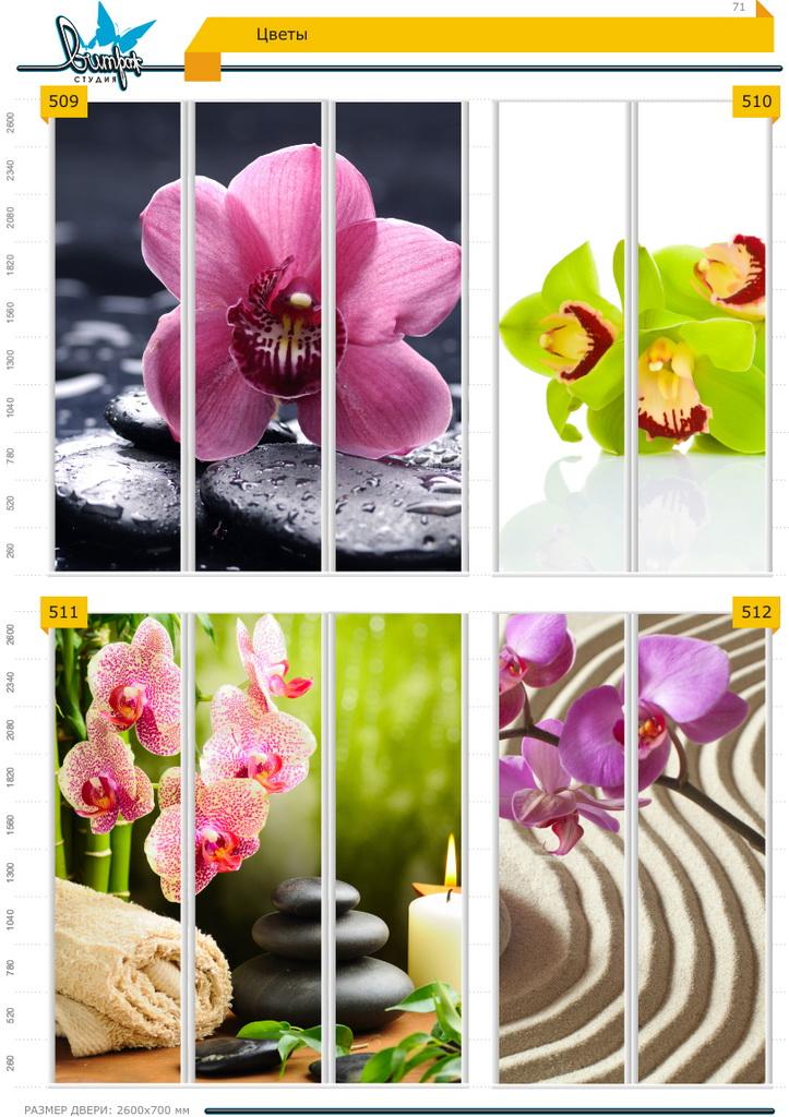 Изображение фотопечати для шкафов-купе, стр.71, цветы
