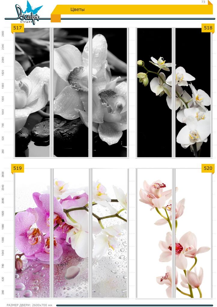 Изображение фотопечати для шкафов-купе, стр.73, цветы