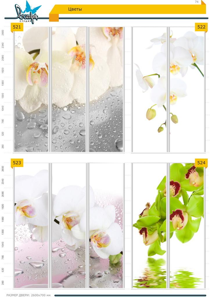 Изображение фотопечати для шкафов-купе, стр.74, цветы