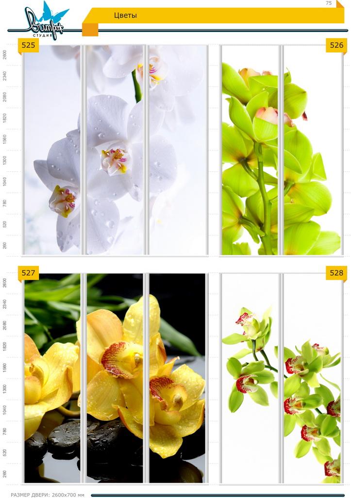 Изображение фотопечати для шкафов-купе, стр.75, цветы