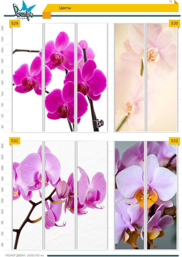 Изображение фотопечати для шкафов-купе, стр.76, цветы