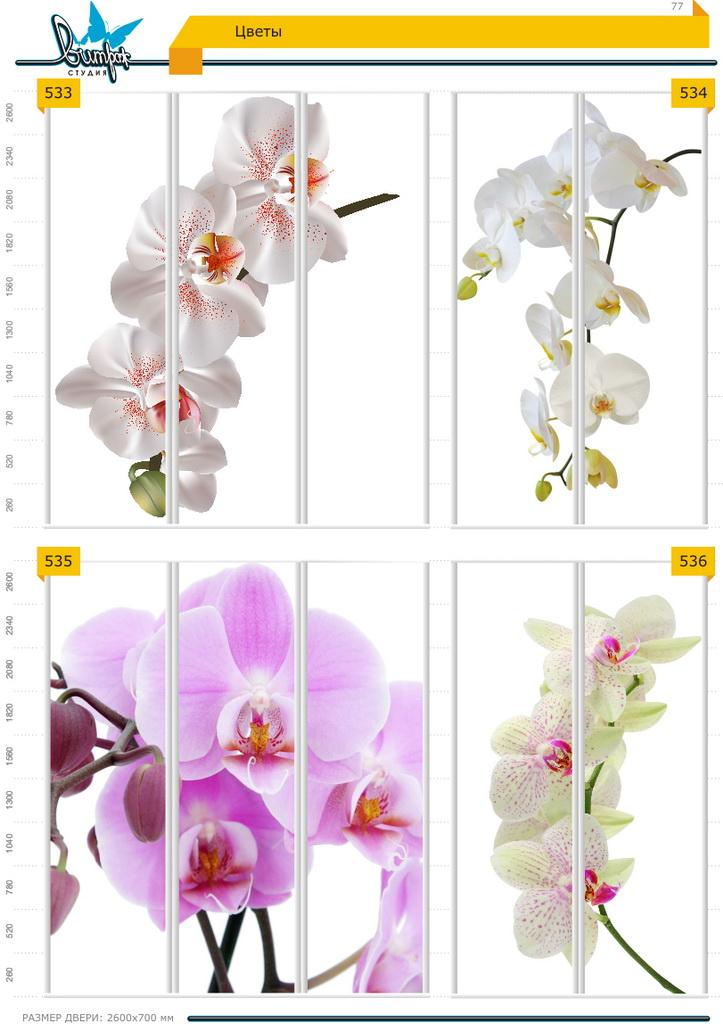 Изображение фотопечати для шкафов-купе, стр.77, цветы