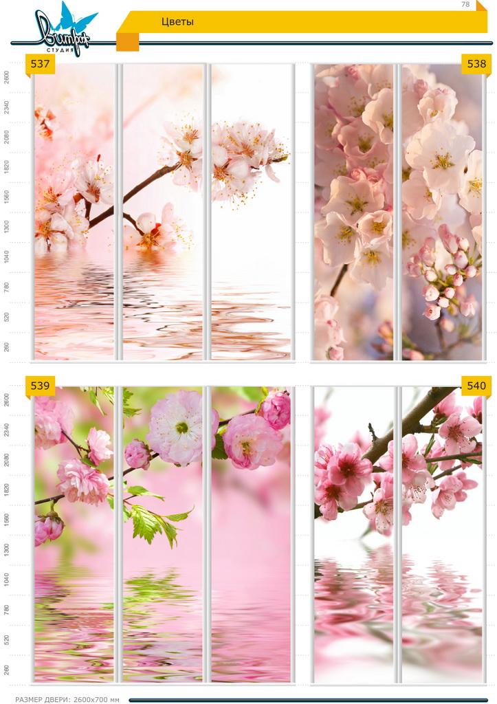 Изображение фотопечати для шкафов-купе, стр.78, цветы