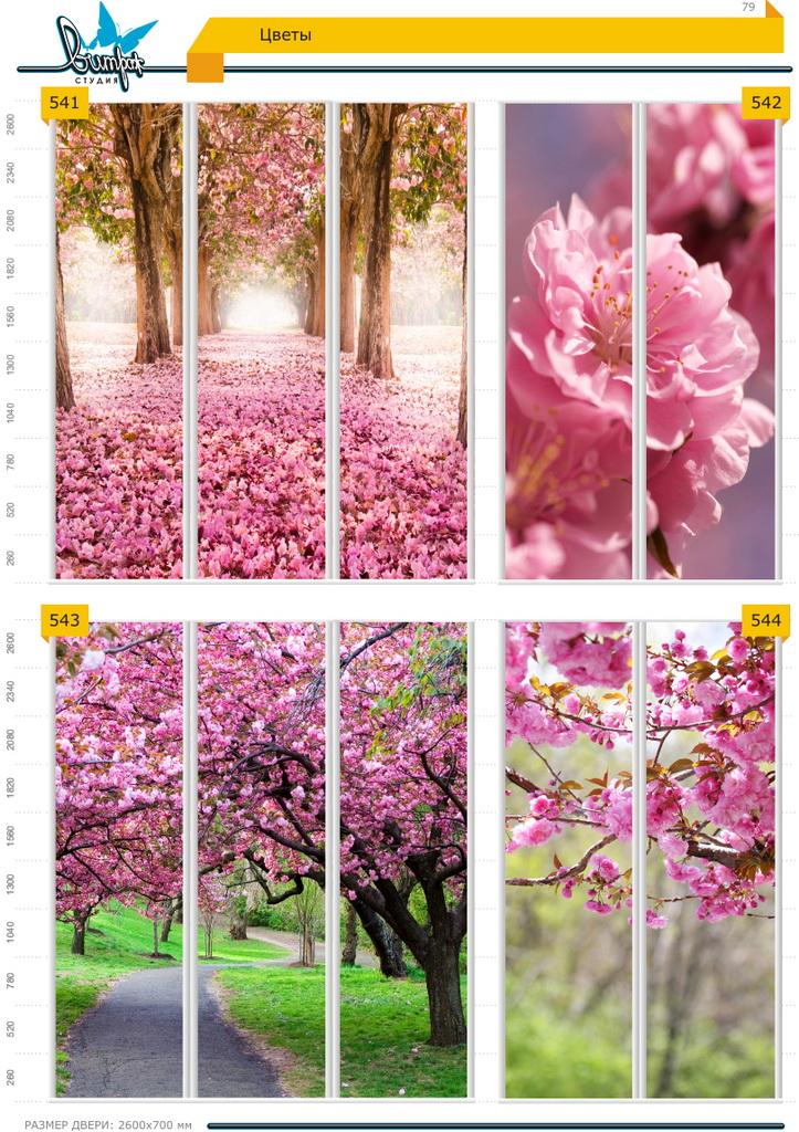 Изображение фотопечати для шкафов-купе, стр.79, цветы
