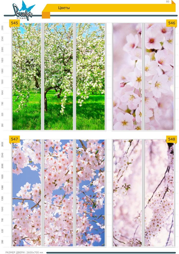 Изображение фотопечати для шкафов-купе, стр.80, цветы
