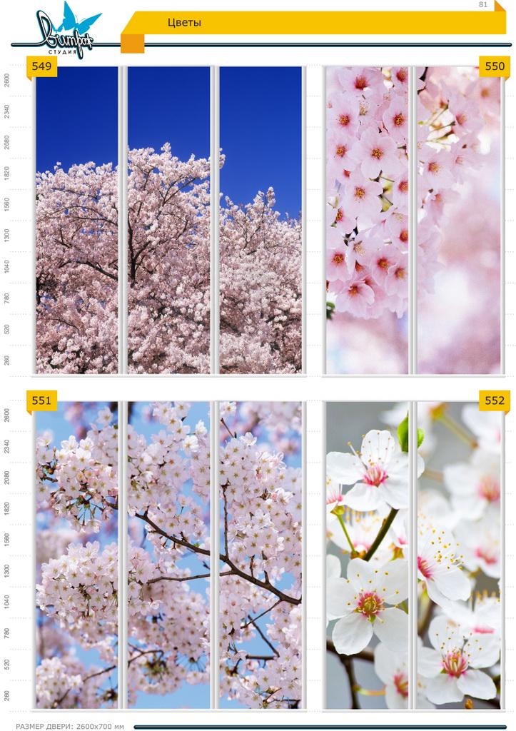 Изображение фотопечати для шкафов-купе, стр.81, цветы