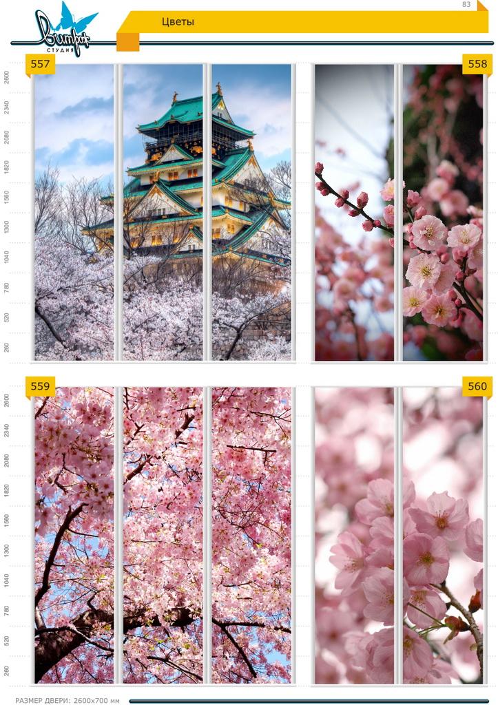 Изображение фотопечати для шкафов-купе, стр.83, цветы