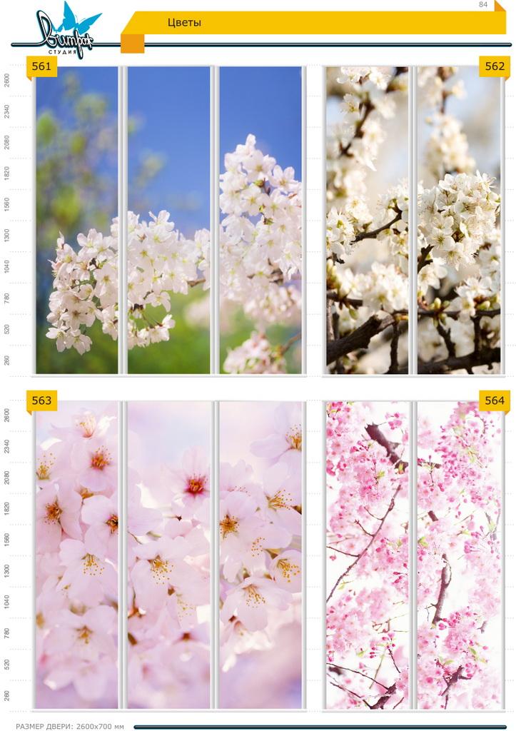 Изображение фотопечати для шкафов-купе, стр.84, цветы
