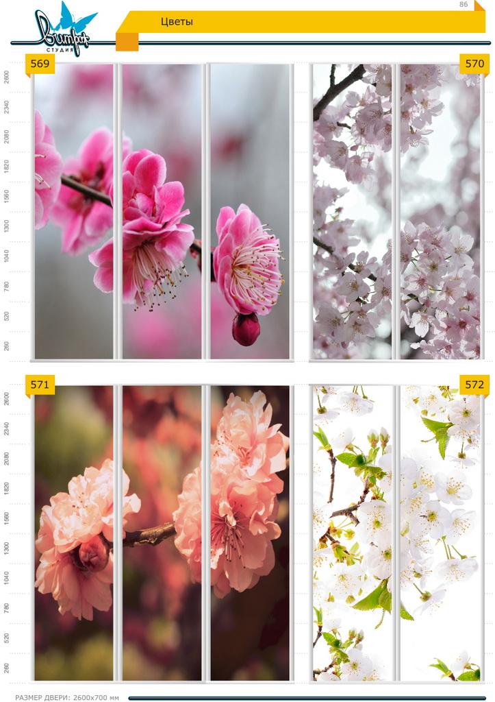 Изображение фотопечати для шкафов-купе, стр.86, цветы