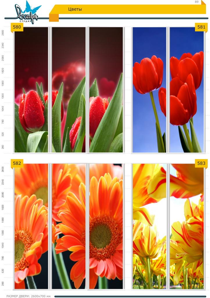 Изображение фотопечати для шкафов-купе, стр.89, цветы