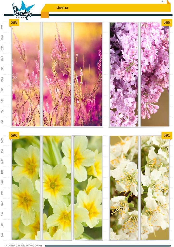 Изображение фотопечати для шкафов-купе, стр.91, цветы