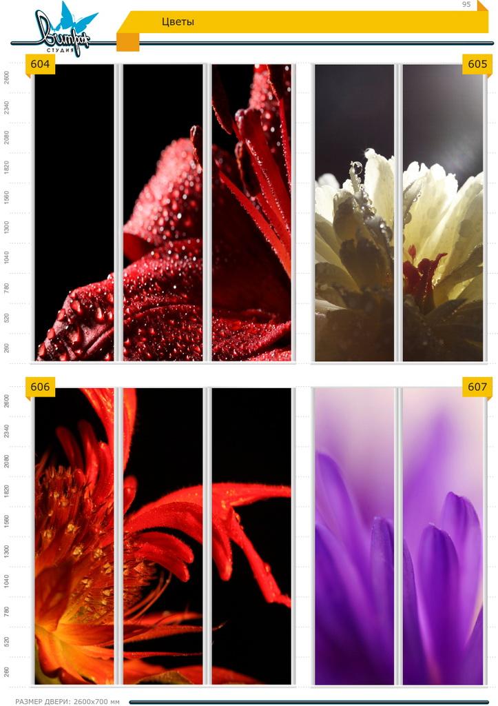 Изображение фотопечати для шкафов-купе, стр.95, цветы