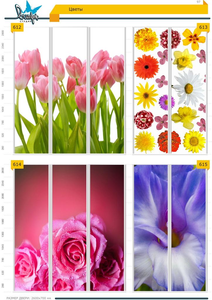 Изображение фотопечати для шкафов-купе, стр.97, цветы